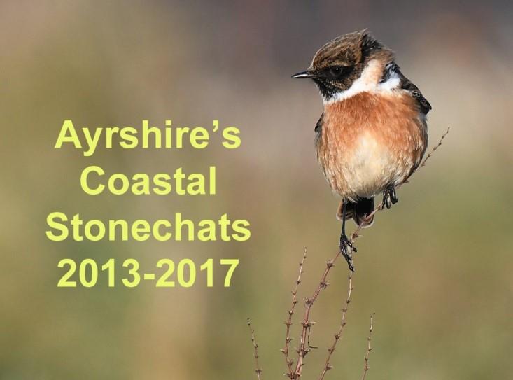 Ayrshire's Coastal Stonechats 2013-2017